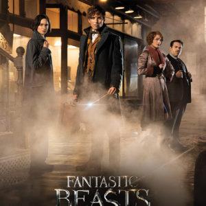ANIMALI FANTASTICI - MAGICAL GROUP (Fantastic Beasts) - Mini Poster 40x50 cm su carta da 150gr